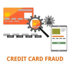 Credit Card Fraud Felony
